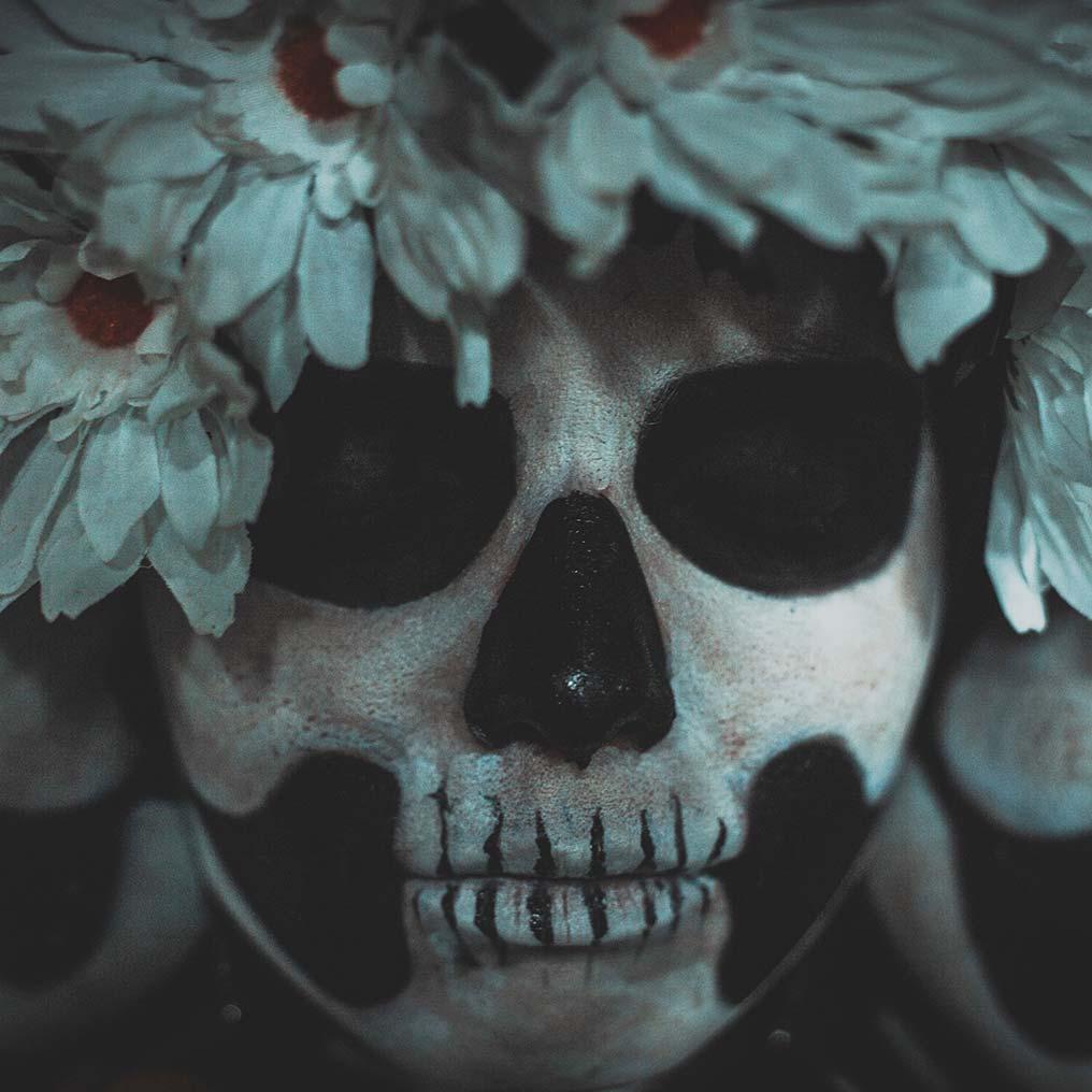 Vida & Muerte